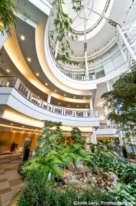 Cardio Lobby Atrium University of Michigan Hospital by Proshooter